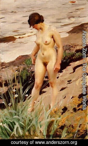 Anders Zorn - Nude by the Shore 1914