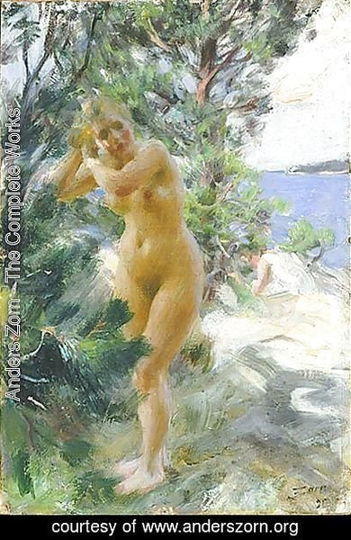 Anders Zorn - After the bath
